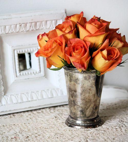 Orangeroses