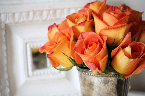 Orangeroses2
