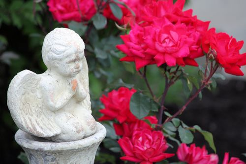 Angel in my Garden