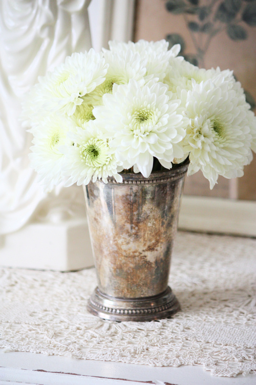 White Pom Flowers