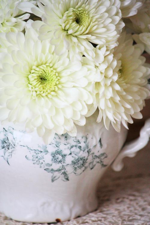 White Pom Bouquet 5