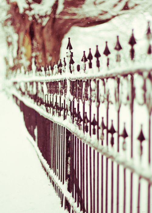 Cemetery Fence in Late Winter