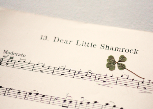 Dear Little Shamrock