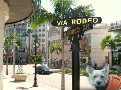 Renoir-on-Rodeo-Dr.