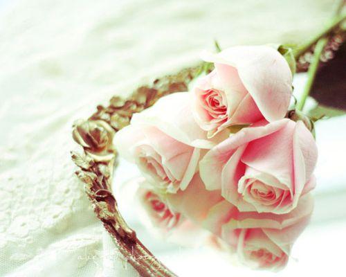 Trio-of-Roses