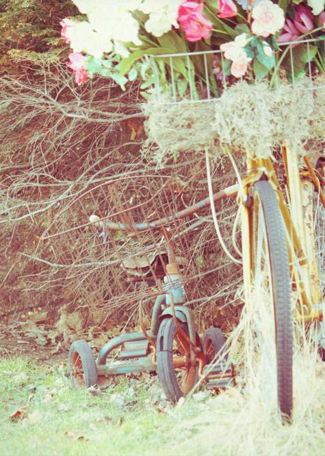Les Bicyclettes 2