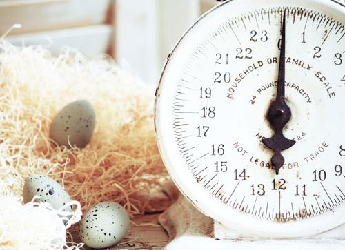 Old Scale and Eggs