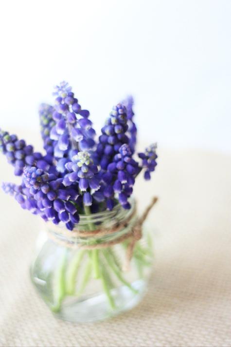 Muscari Bouquet 1